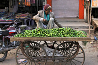 Old Man Selling Green Peppers On Cart