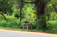 Sri Lanka Chair By Road With Fruit & Veggies