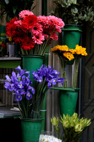 Colorful Buckets Of Flowers